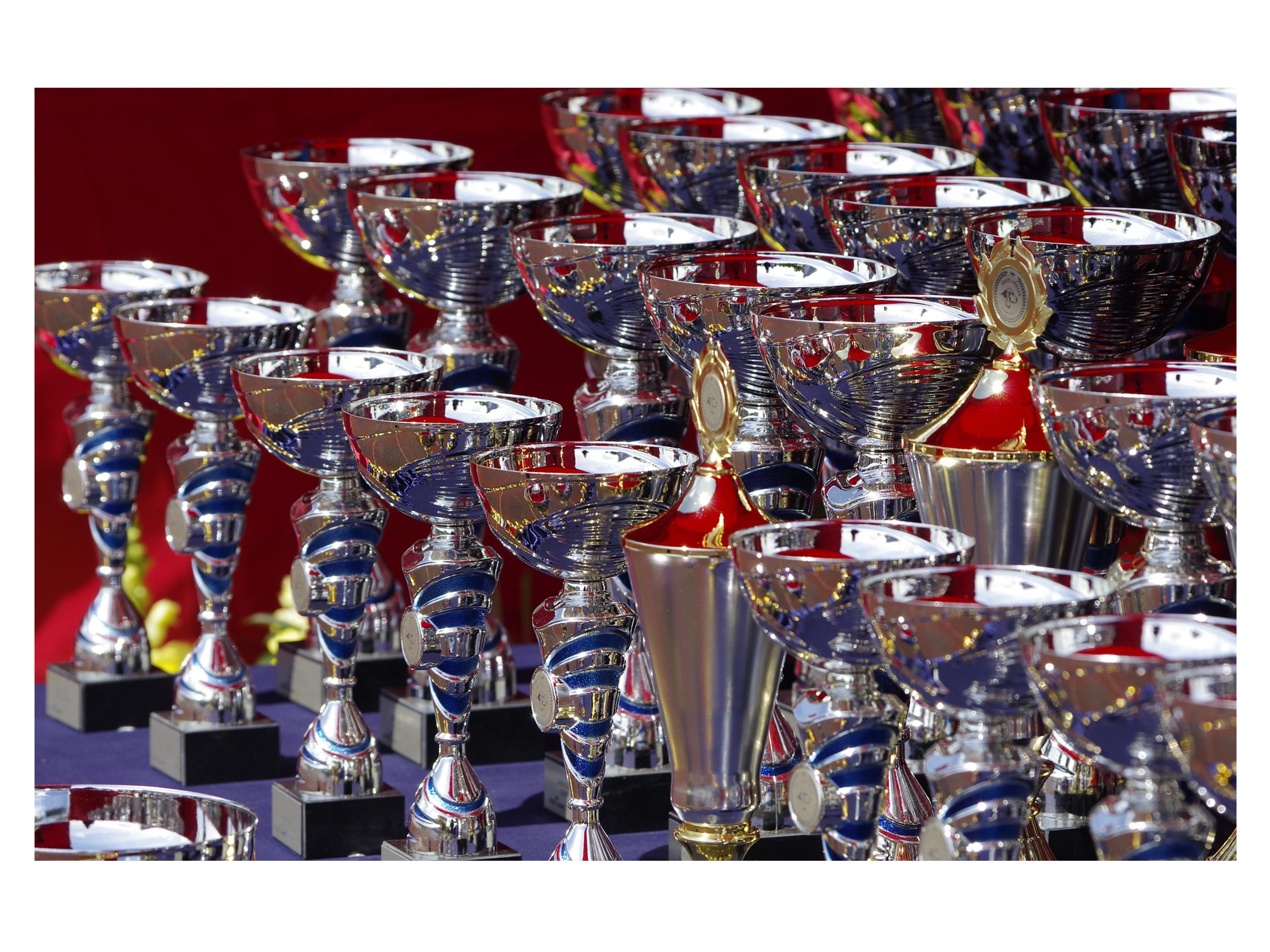 trophies-710169_1920 (1)